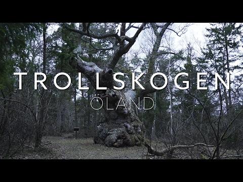 Trollskogen Öland