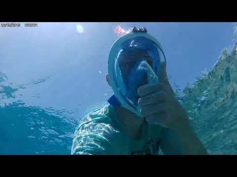 EIDR-Aquaristik Sagt Danke Für Ein Tolles Jahr - Schnorcheln In Hurghada 2019 Red Sea