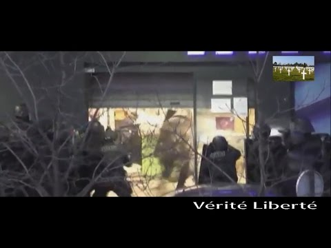 Assaut du RAID et BRI - Attentats Paris 2015 [-18]