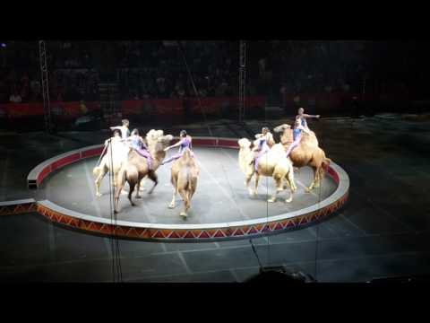 Cumento - Ringling Brothers Circus 04-29-2017(2)