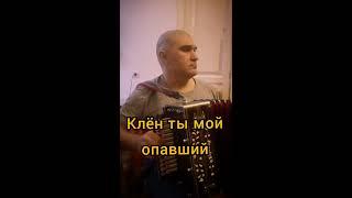 Клён ты мой опавший. Вариант исполнения песни на стихи Сергея Есенина под Нижегородскую Гармонь.