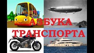 Видео для детей о транспорте Обучающее видео для детей Азбука транспорта