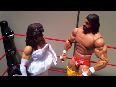 "WWE ACTION INSIDER: Miss Elizabeth Mattel Elite series 19 Figure review ""grims toy show"""