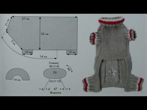 Вязаная одежда для чихуахуа своими руками схемы