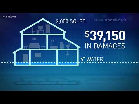 Flood damage vs. water damage: How to know what insurance will cover