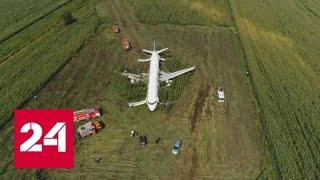 Смотреть видео Треть пассажиров аварийного самолета отказываются лететь в Симферополь - Россия 24 онлайн