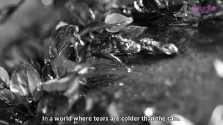 [TRAILER] cold tears - Jiyoung & Taemin