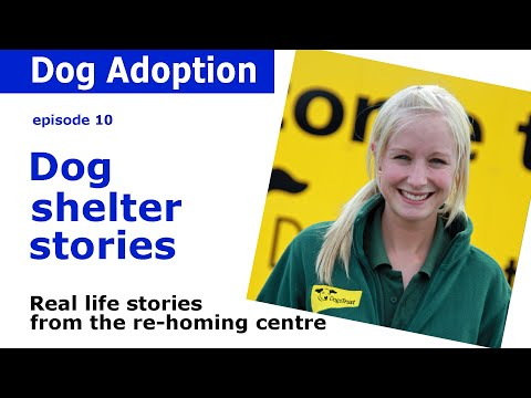 Dogs Trust Documentary - Episode 10