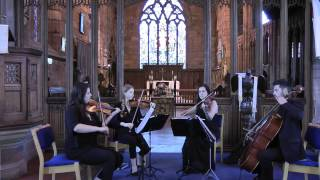 Download Hoppipola Sigur Ros (BBC Planet Earth) Wedding String Quartet MP3 song and Music Video
