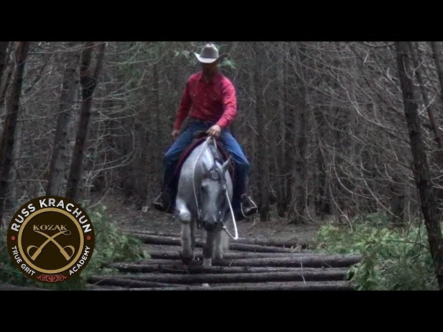 Discussion with Russ Krachun - Discover Horsemanship Philosophy & Methodology -Foundation Lesson 14