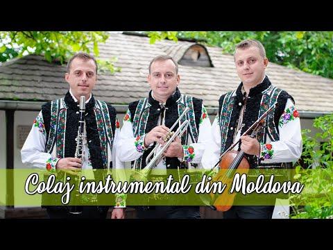 Frații Reuț - Colaj instrumental de nuntă 2018 Moldova Bucovina