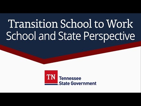 Transition School to Work: School and State Perspective