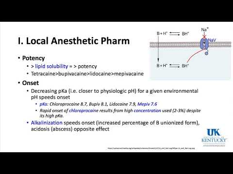 University of Kentucky Anesthesiology Pharmacology Keyword Review 2018 Part 1 of 3 - (Dr. Schell)