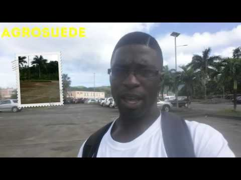 Agrosuede Is Heading To Barbados