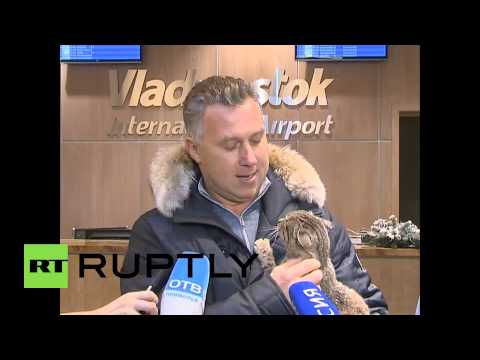 Russia: Meet Matroskin - the cat who munched $1,000 of FISH