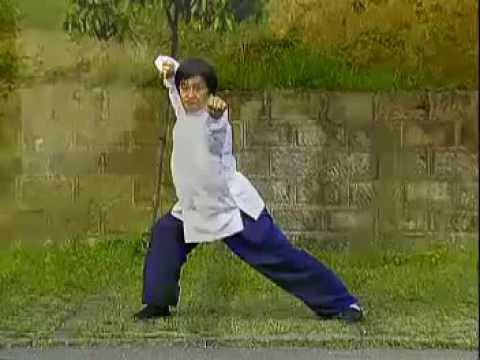 中國武術名拳錄---大八極拳 Da Baji Quan