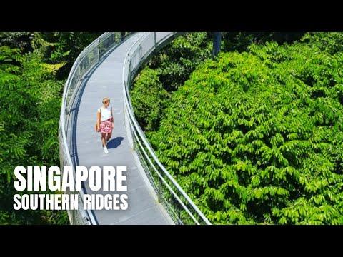Southern Ridges Walk (City Skyline at Henderson Waves)/亨德森波浪桥新加坡徒步旅行/ヘンダーソンウェーブブリッジシンガポールウォーキングツアー