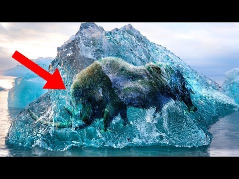 Most MYSTERIOUS Facts About The ICE AGE!