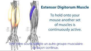 Quelles sont les causes des douleurs à la main