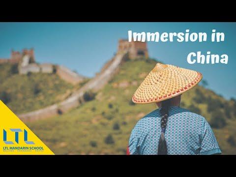 《外国人在中国》 CCTV Foreigners in China Sean -  LTL