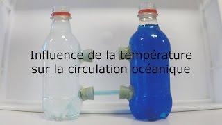 Influence de la température sur la circulation océanique thumbnail