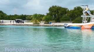 3 de 3 Paceo en Kayak hasta Indian Key Historic State Park.