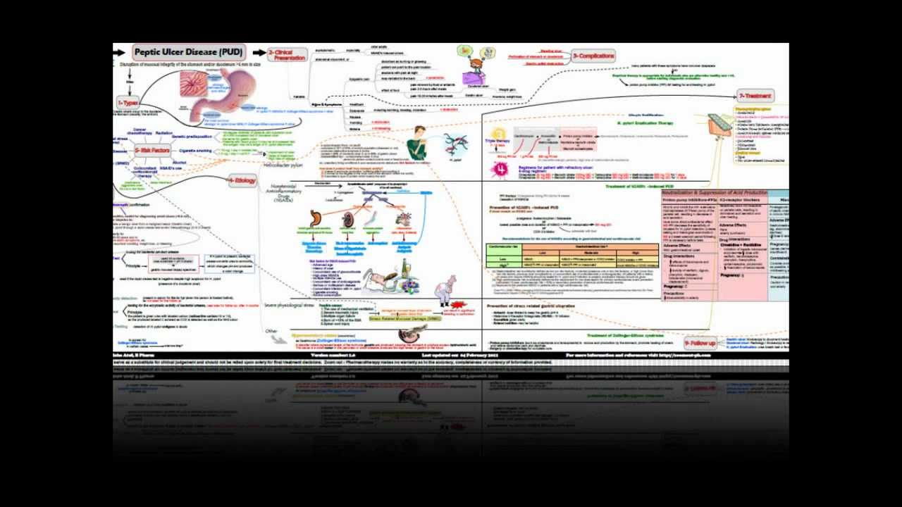 peptic ulcer disease concept map youtube - Evolve Concept Map Creator