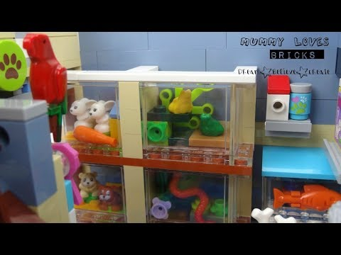 LEGO Pet Shop 10218  renovations and revamp