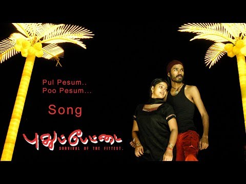 Pudhupettai Songs | Pudhupettai Video Songs | Pul Pesum Poo Pesum Song | Dhanush | Selvaraghavan