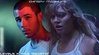 Nick Jonas & Tove Lo - Levels / True Disaster (Mashup)
