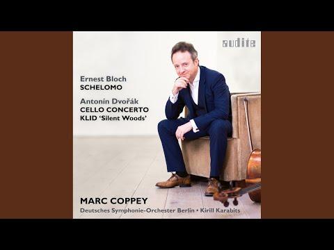 Cello Concerto In B Minor, Op. 104 / B. 191: I. Allegro