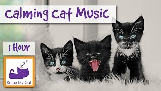 Soothing Instrumental Music for Cats and Kittens, Music to Calm Down Cats