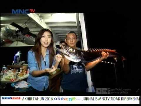 Perlawanan Monster Laut di Perairan Lampung - Mata Pancing (19/3)