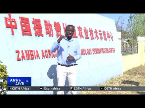 Zambia-China cooperation summit promises sector development