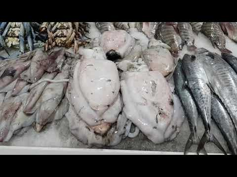 Dubai Fish and Seafood Market - WaterFront Market in Dubai - World's Best Market