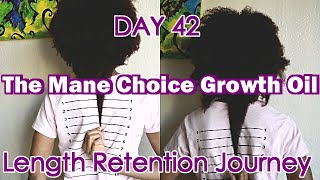 DAY 42: The Mane Choice Growth Oil | Length Retention Journey