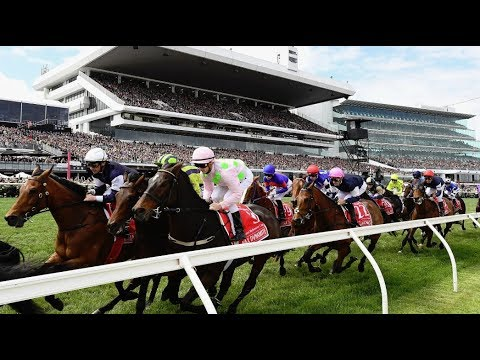 The Melbourne Cup 1981-2018