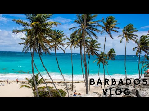 BARBADOS VLOG//WHAT I ATE VEGAN