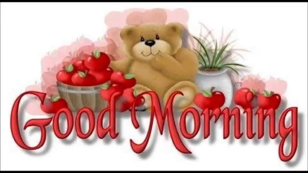 Good Morning Videos Funny Good Morning Whatsapp Video Message For