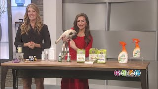 Protecting pets from parasites