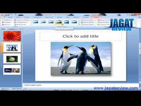 Microsoft PowerPoint 2007 - Insert Image