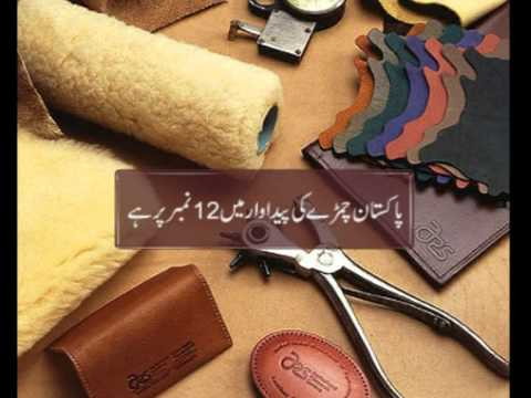 leather industry pakistan Every year, the global leather industry slaughters more than a billion animals most of the leather in the us and europe comes from india, china, and other.