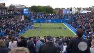 SF: Murray vs. Tsonga; 2013 Aegon Championships Highlights Thumbnail