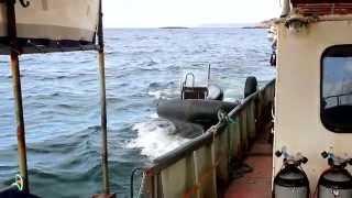 Надувные лодки, купить лодку пвх гребную или моторную в ...