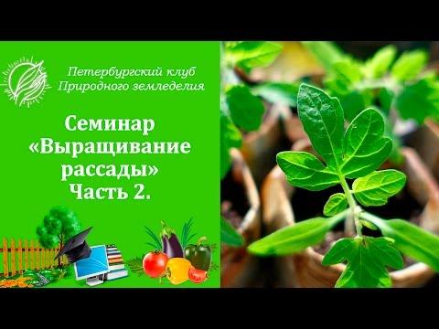 Семинар 11. Выращивание рассады. Часть 2.