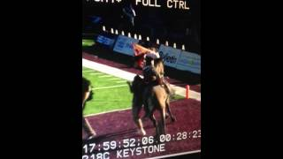NMSU's Pistol Pete, riding Keystone, knocks girl down at Cal Poly game