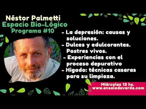 Néstor Palmetti / Espacio Bio-Lógico #10 / La depresión: causas y soluciones