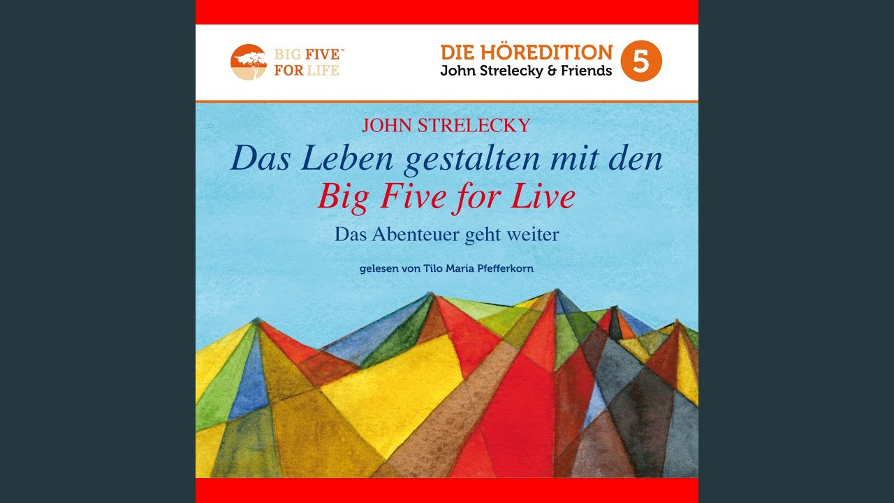 Das Leben gestalten mit den Big Five for Life von Strelecky ...