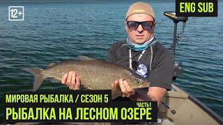 Рыбалка на Лесном озере ч 1 Мировая рыбалка 5 6