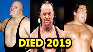 WWE Wrestlers Who Died In 2019 ! WWE Wrestlers Deaths